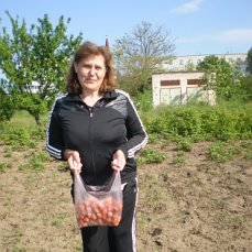 КРЫЛЫШКИ: с кленовым сиропом и помидором