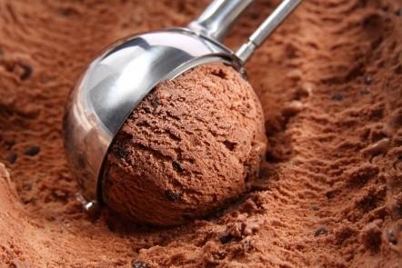 МОРОЖЕННОЕ: с шоколадом
