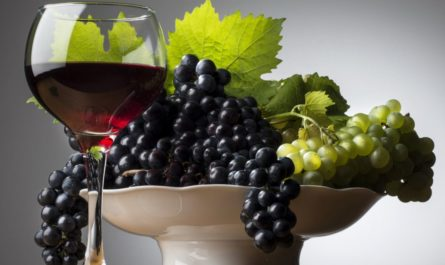 РЕКОМЕНДАЦИИ ДЛЯ ЗДОРОВЬЯ: виноград и вино